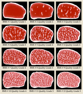 Beef Marbling Standard Quality Grades